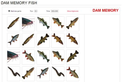DAM Memory fish