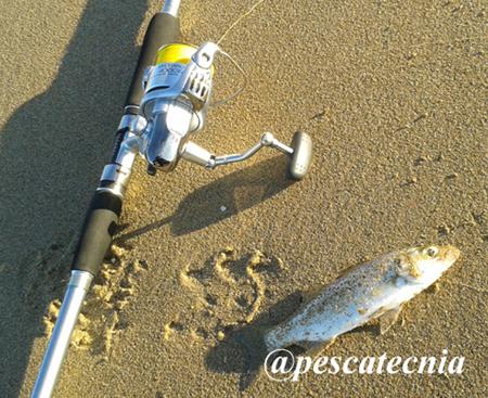 Equipo pesca Bombeta Pescatecnia